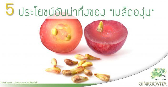 Ginkgovita grapeseed
